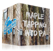 Maple: Tapping into PA